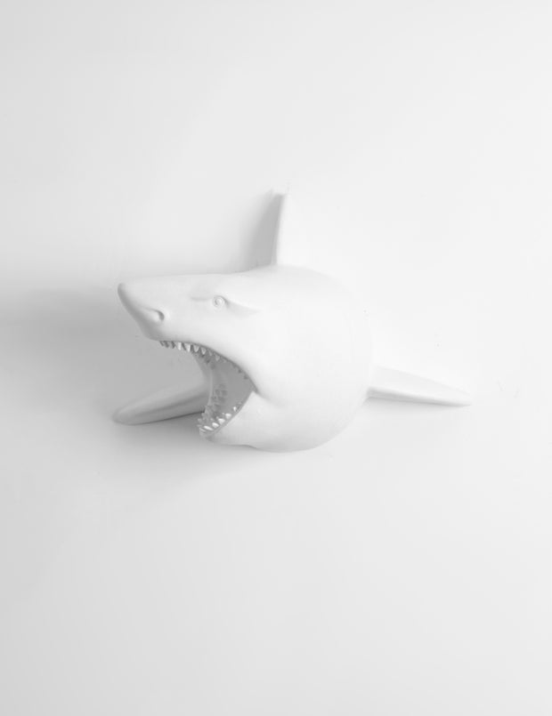 White Faux Shark Wall Mount by White Faux Taxidermy. Modern Nautical Wall Decoration