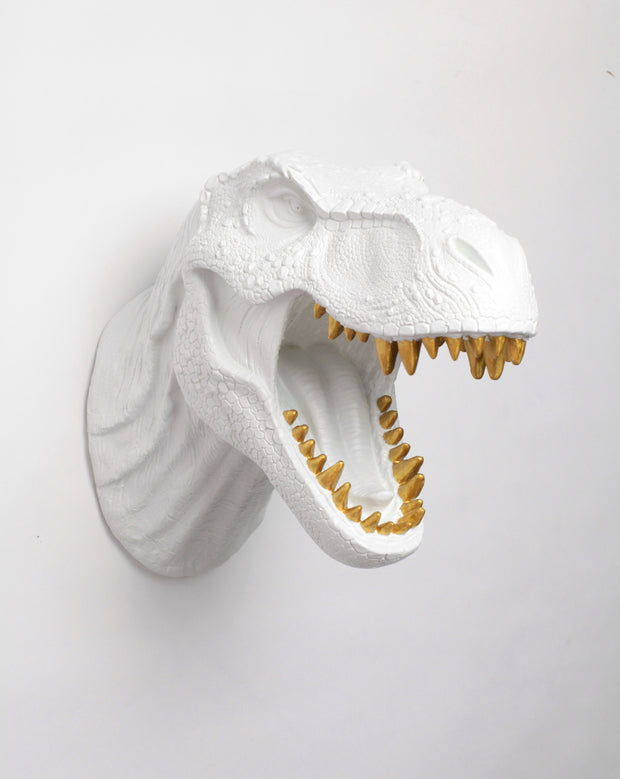 White Dinosaur Head Wall Mount with Gold Teeth