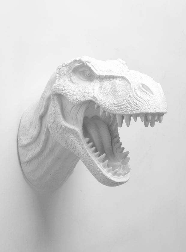 White Dinosaur Head Wall Hanging Decoration by WhiteFauxTaxidermy.  The Bronson.