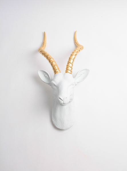 The Franny in White + Gold | XL Antelope Head Wall Mount | Gazelle Faux Taxidermy