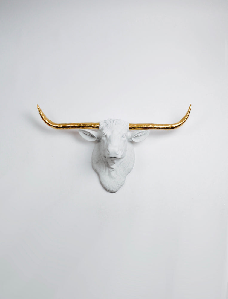 White Longhorn Head with gold horns Wall Mount