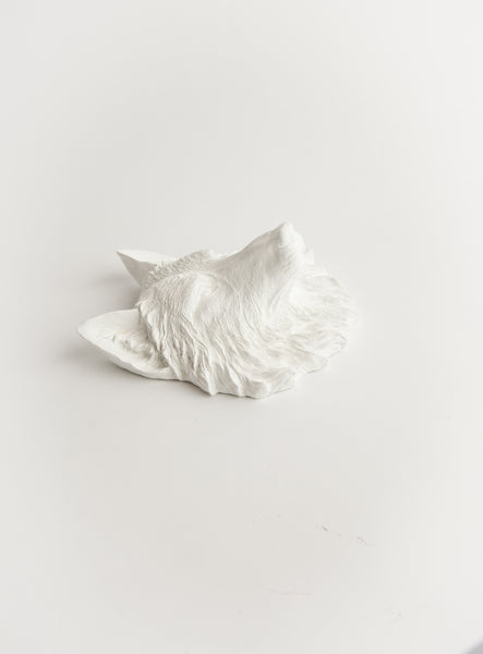 The Jefferson | Mini Wolf Head | Faux Taxidermy | White Resin