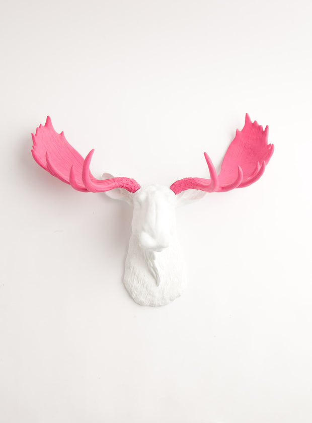 White Moose Head & Pink Antlers Wall Decor, The York