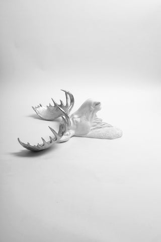 The Adobe | Moose Head | Faux Taxidermy | White Resin w/Silver Antlers