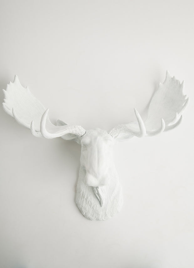 Fake Taxidermy Moose Head Wall Sculpture