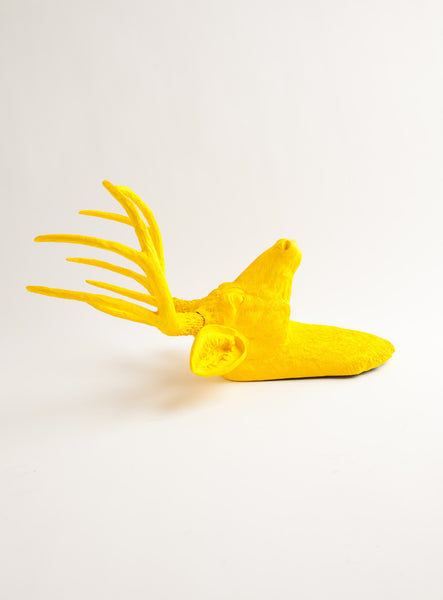 The Pablo | Stag Deer Head | Faux Taxidermy | Yellow Resin