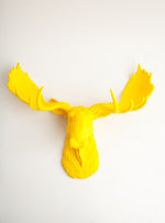 Yellow Moose head Wall Sculpture