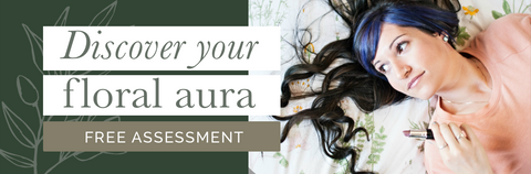 Free Skin Assessment - See how your skin is doing and get a customized holistic and natural approach to caring for your skin