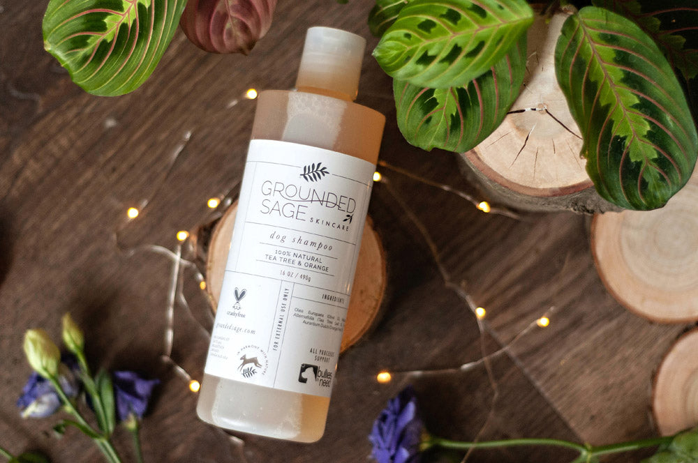 Tea Tree & Orange Dog Shampoo