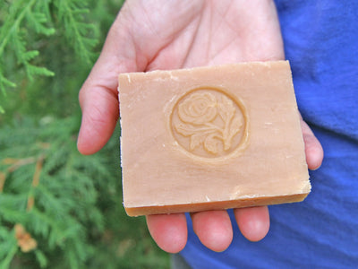 Harvest Apples CP Soap
