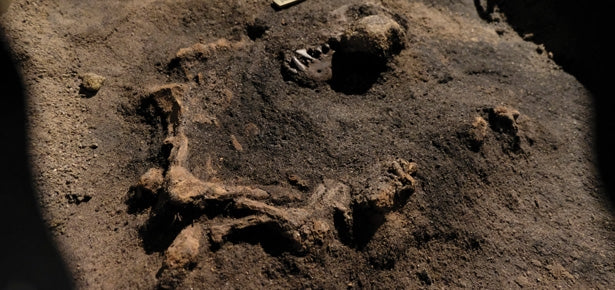 Archeologists Discover Dog Remains More Than 8,400 Years Old Buried Next to Human