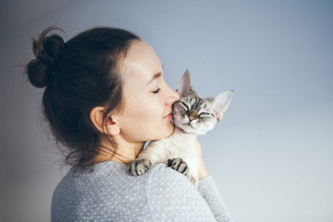 Do cats get attached to their humans?