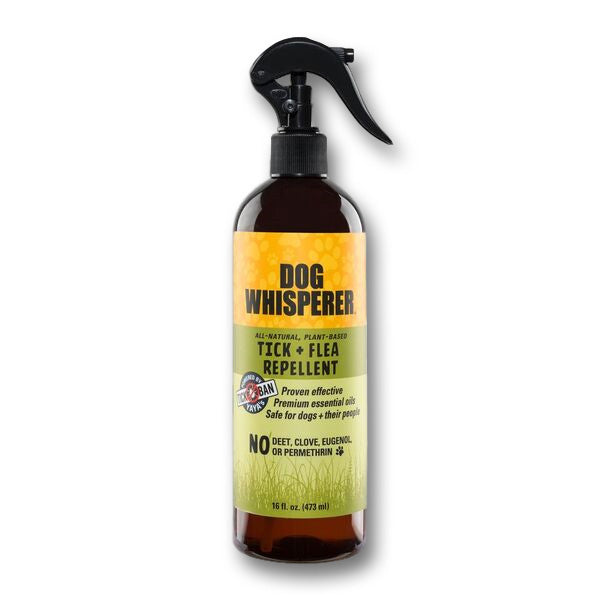 Dog Whisperer TICK + FLEA Repellent