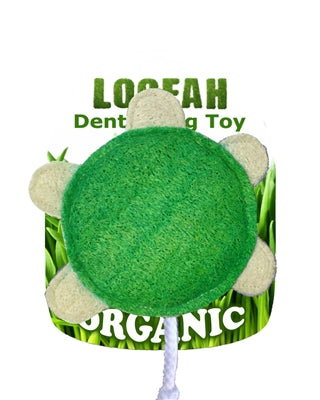 Turtle Loofa Organic Dental Toy