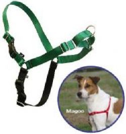 ECO Easy Walk Harness & Leash