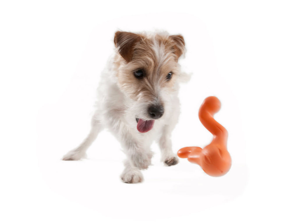 Tizzi Dog Toy