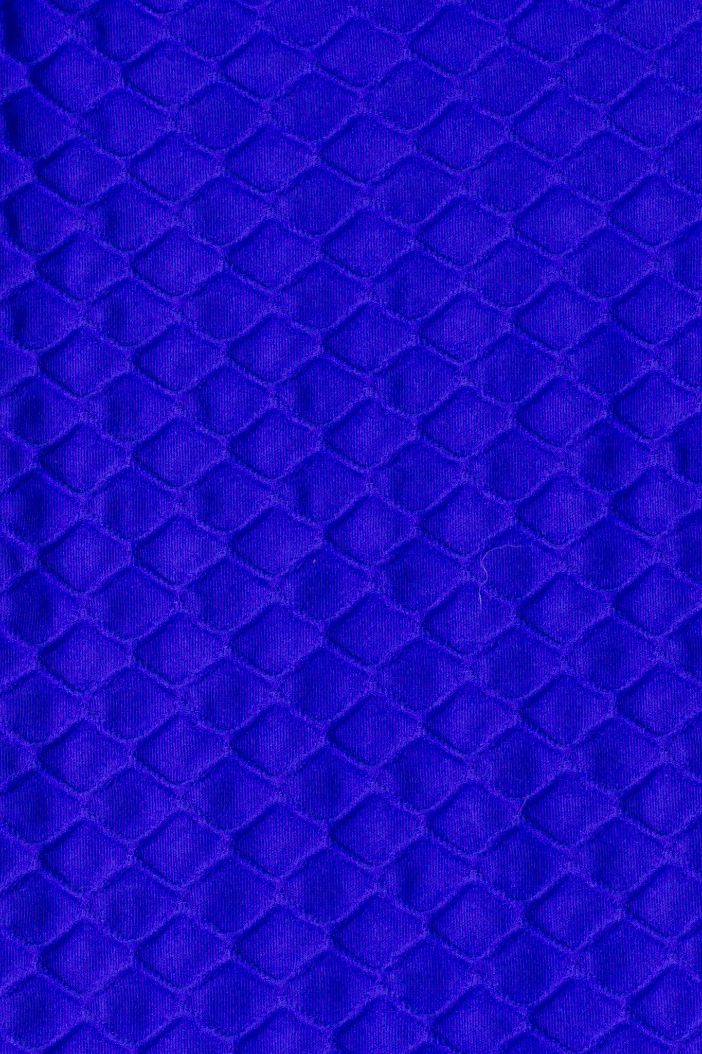 Legging Full Length Wallpaper - Amni, Royal Blue