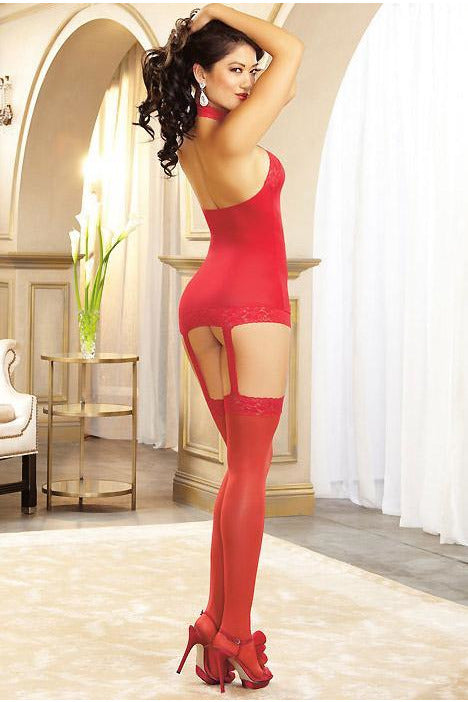 Dreamgirl Sheer Red Garter Dress