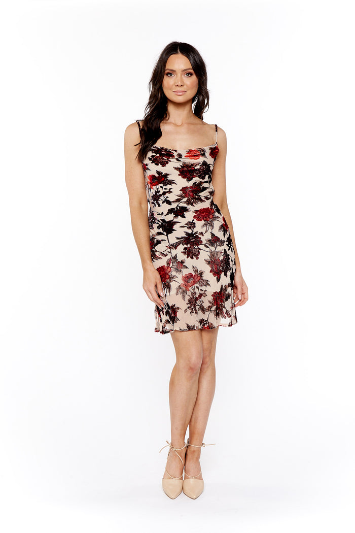 Rat & Boa Ceretti Dress
