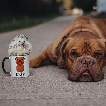 Dogue De Bordeaux Mug - The Dapper Paw
