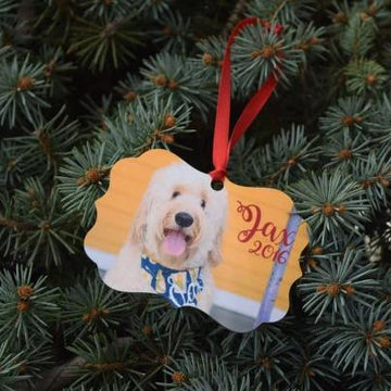 Double Sided Photo Ornament - The Dapper Paw