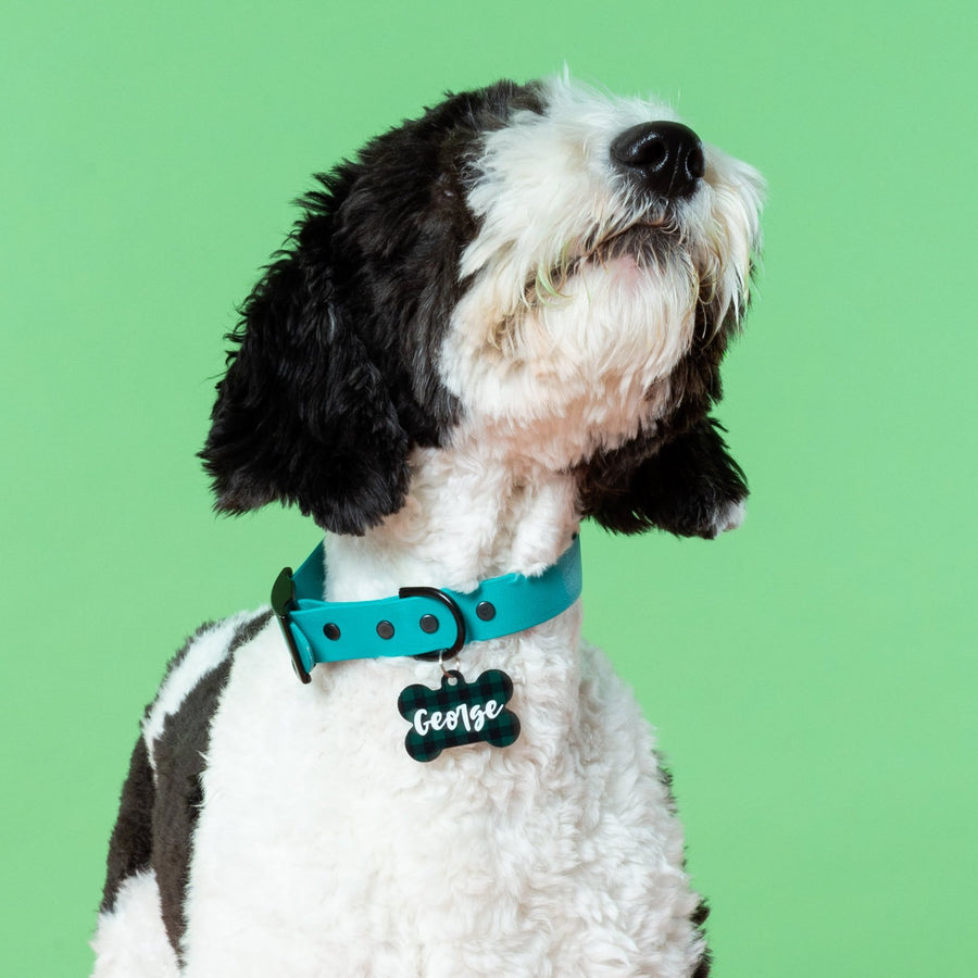 St. Patrick's Day Plaid ID Tag - The Dapper Paw