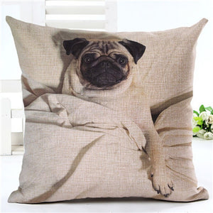 Cute Pug 2 - Square European Style Cushion