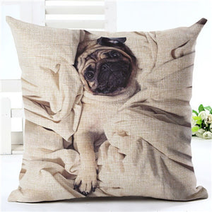 Cute Pug 1 - Square European Style Cushion