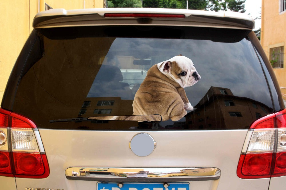 Cute Bulldog Rear Wiper Sticker - FREE SHIPPING!