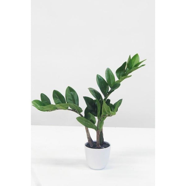 Potted Faux Zamifolia Plant Decorate Default Title Flower Systems