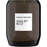 Ashley & Co Waxed Perfume Vine & Paisley Fragranced Palm Wax Candle