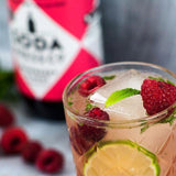 Soda Press Co Organic Raspberry & Mint Soda & Mixing Syrup