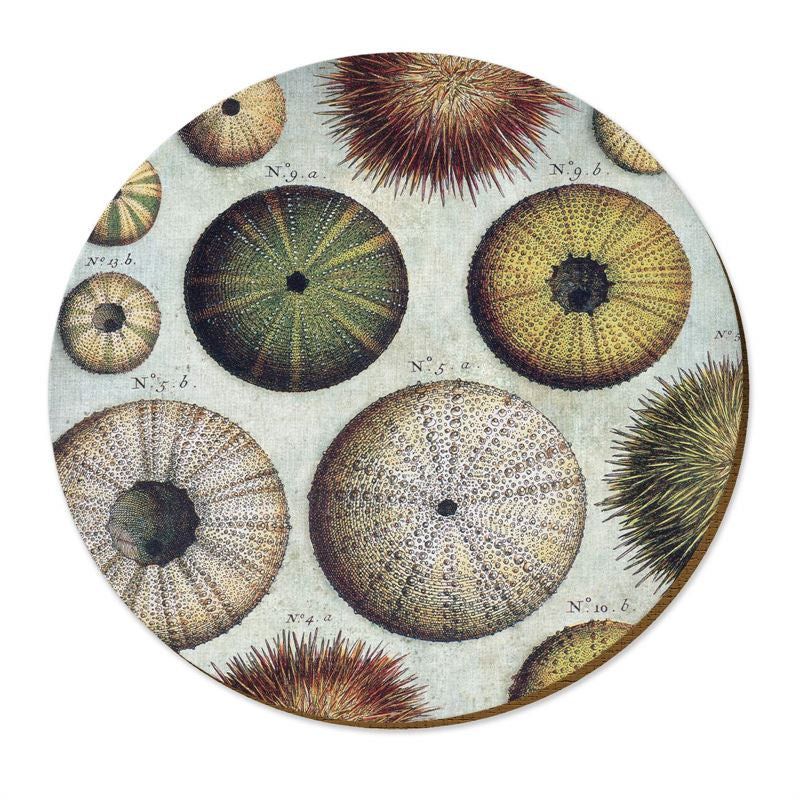 Cork Backed Round Placemat - Coast Series - 2 Designs Table Linen Kina Wolfkamp & Stone