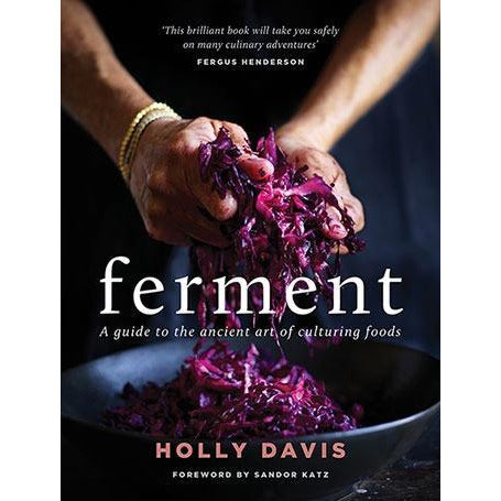Author, Wholefood Chef, Fermenter Holly Davis Ferment: A Guide To The Ancient Art Of Culturing Foods Cookbook Fermentation Cookbook
