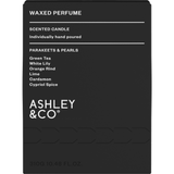 Ashley & Co Waxed Perfume Parakeets & Pearls Fragranced Palm Wax Candle