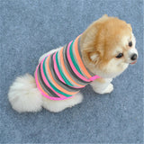Summer Multi-Coloured Tank Tshirt For Small Dogs