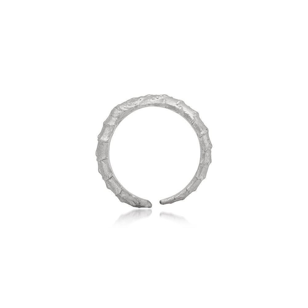 SPINE RING | SMALL