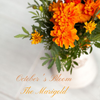 October's Blooms; The Marigold