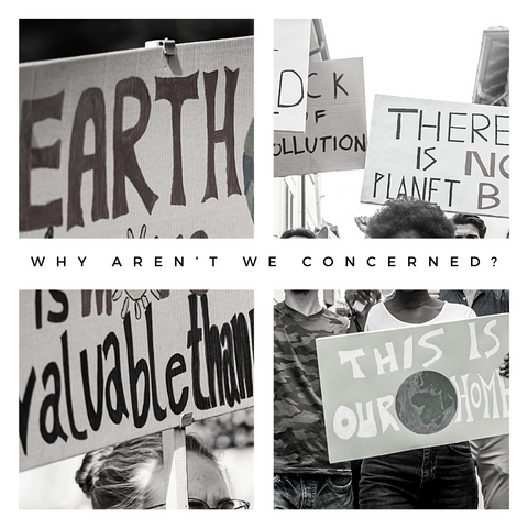 climate change, protest, environmental concerns