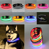 LED Flashing Light Up Nylon Safety Collar for Dogs