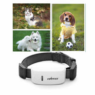 Dog Collar with GPS Tracker - with IOS /Andriod App
