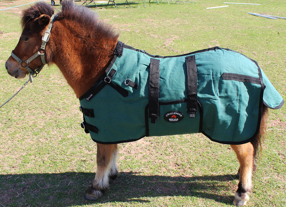 Canvas Duck Turnout Water Resistant Foal Winter Blanket  51701