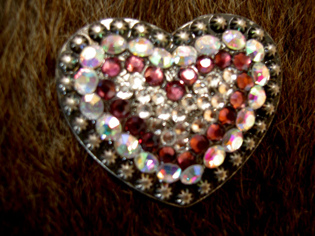 4 Conchos Rhinestone Horse Saddle Bridle Tack Western Bling Crystals Heart CO06
