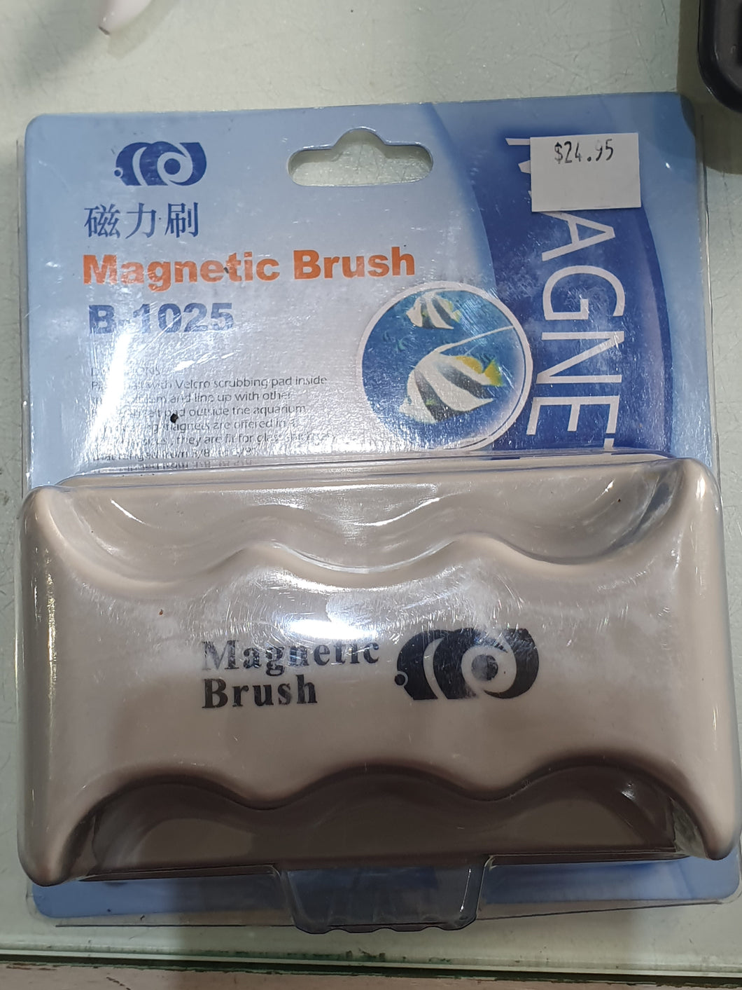Magnetic Brush Various Sizes