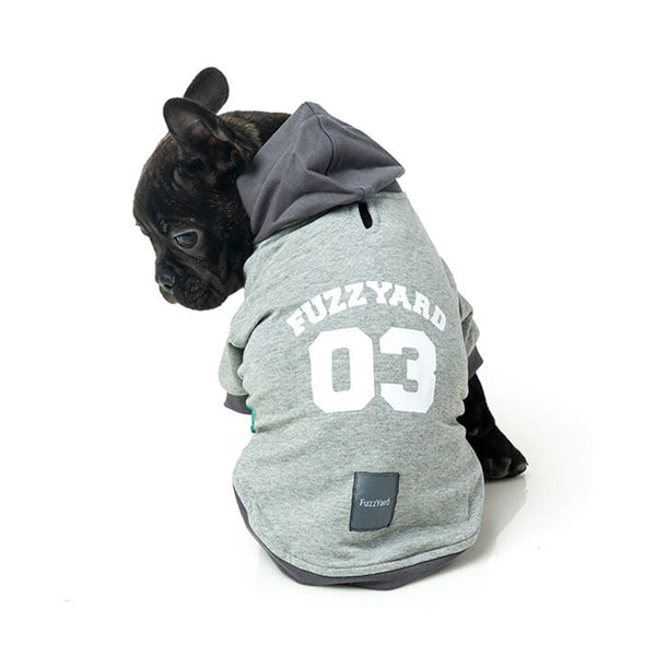 Hoodie Gris The ´03 - Theo & Cleo