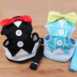 Fashion Dog Harness & Leash for Small Dogs and Puppies