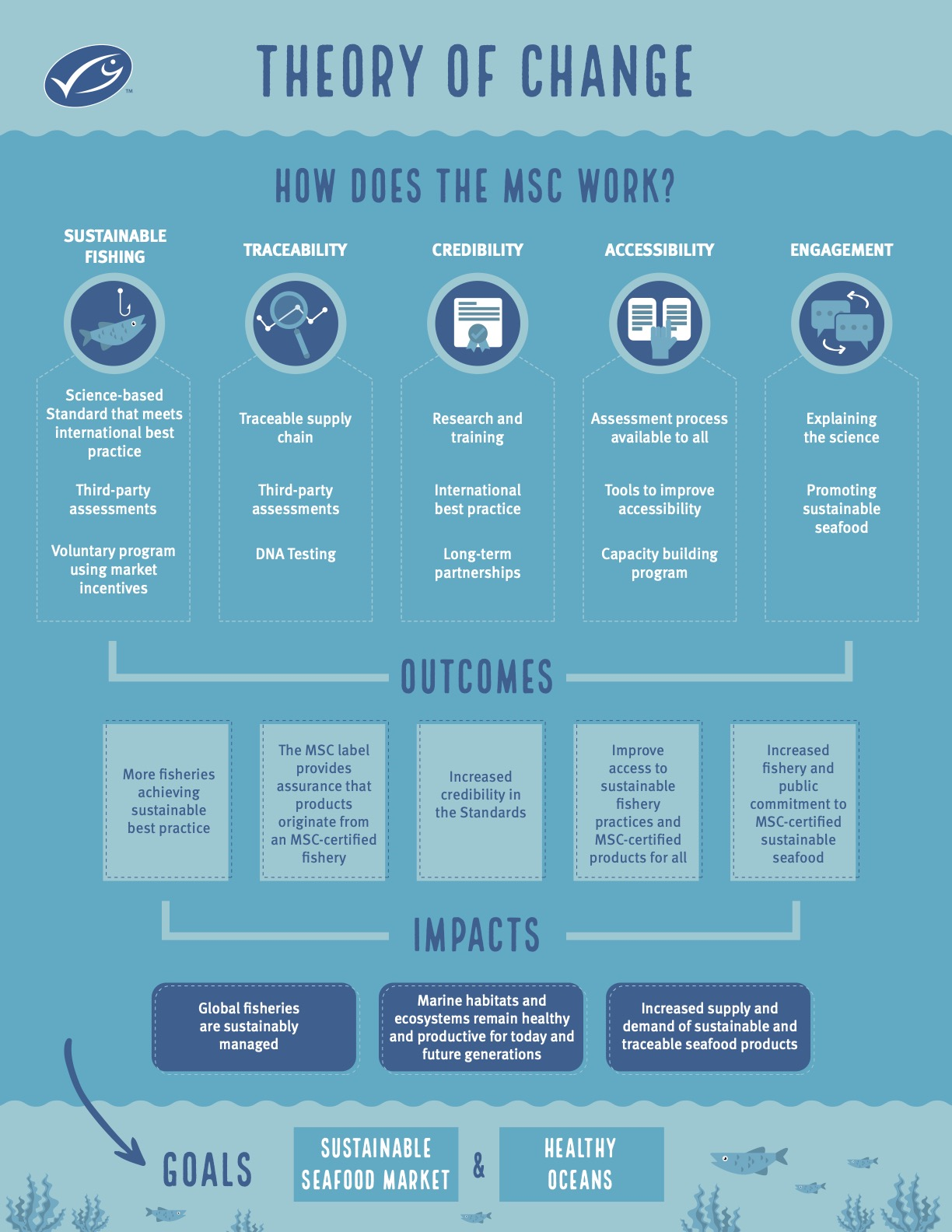 MSC Theory of Change infographic