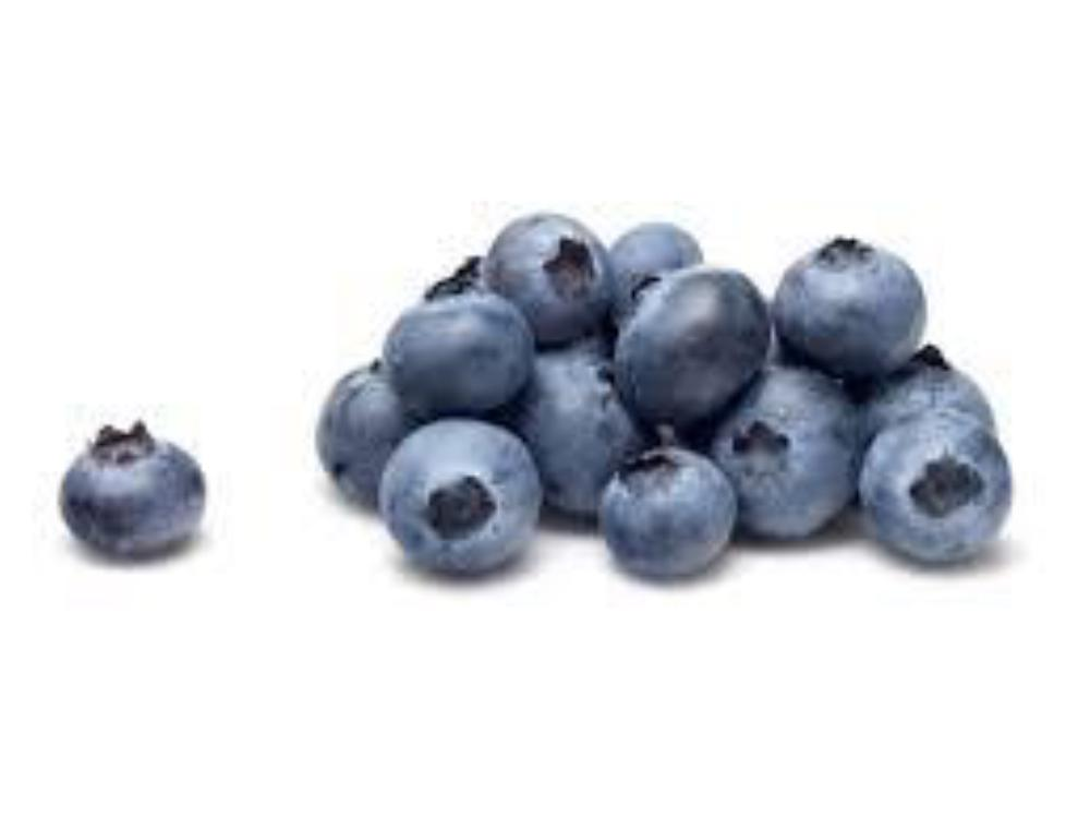 Michigan Blueberries Preorder