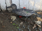 Ducks - Northern Shoveler Duck Decoy – Foldable And Collapsible Full Body Decoys (6 Decoys)