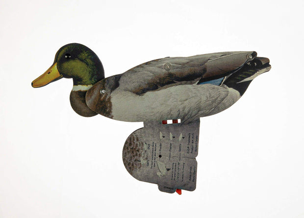 Ducks - Mallard Duck Decoy – Foldable And Collapsible Full Body Decoys (6 Decoys)